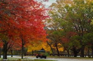 autumn-1-2
