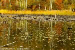 autumn-2-2